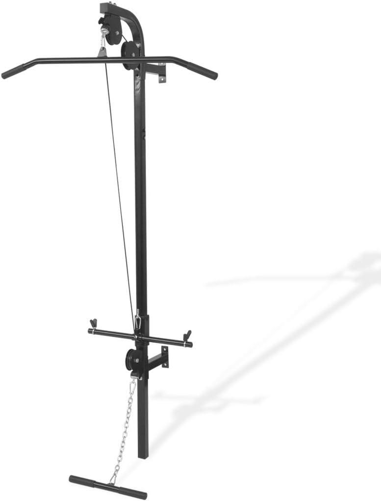 vidaXL Gimnasio Casero de Montaje en Pared con 2 Poleas Maquina de Musculación