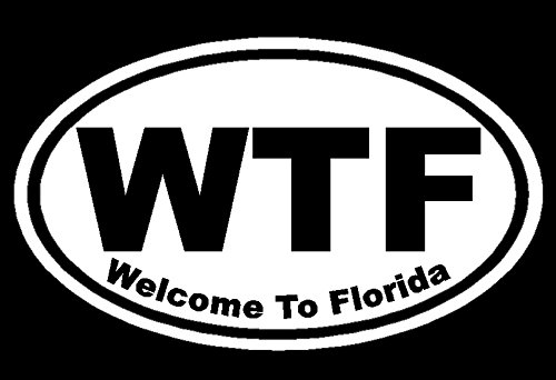 Dan's Decals Welcome To Florida Decal, WTF Sticker, Funny Floriduh Bumper Stickers, Please Message Us For More Size, Color, And Designs (H 3.5 By L 6 Inches, White)
