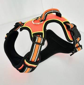 orange M orange M GaoMiTA Dog Chest Strap with Traction Rope Medium and Small Dog Chain Dog Leash Belt Dog Leash pet Chest Strap (color   orange, Size   M)