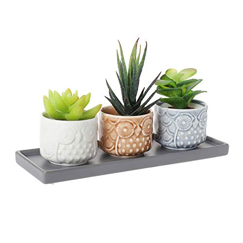 T4U 2.75 Inch Ceramic Owl Pattern Sucuulent Plant Pot/Cactus Plant Pot Flower Pot/Container/Planter Full Color Set with Grey Tray Package 1 Pack of 3