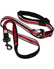 Kurgo 6-in-1 Hands Free Quantum Dog Leash, Running Dog Leash, Adjustable Dog Waist Running Belt, Reflective Dog Leash for Walking, Running, Hiking, 6 Foot Leash