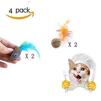 Ying-D - Juego de 4 Juguetes interactivos para Gatos, 2 Juguetes para Gatos y 2 Pelotas de Menta para Gatos con Plumas para Gatos: Amazon.es: Productos para ...