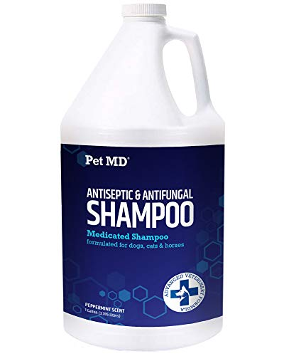 Pet MD Medicated Shampoo for Dogs, Cats, Horses with Ketoconazole & Chlorhexidine Antifungal & Antiseptic Shampoo for The Treatment of Ringworm, Yeast Infections, Acne, Mange & Hot Spots 1 Gallon