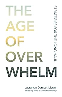 Book Cover: The Age of Overwhelm: Strategies for the Long Haul