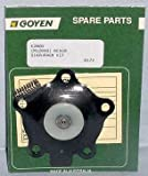 Goyen Diaphragm Kit K2000