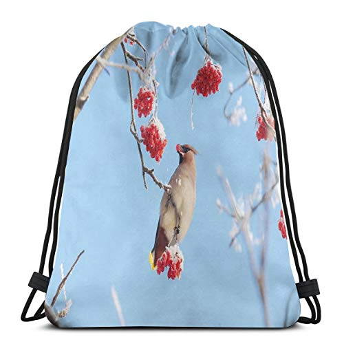 Unisex Drawstring Bag Gym Bags Storage Backpack,Waxwing Eating Frozen Rowan Berries Clear Blue Sky View Cold Winter Weather