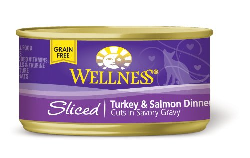 Wellness Canned Cat Food, Sliced Turkey and Salmon Dinner, 24-Pack of 3-Ounce Cans, My Pet Supplies
