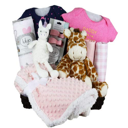 Vania/'s Baby Gift Basket Pink Baby Girl Beautiful Baby Gift Basket Baby Essentials Send with Your Personalized Message Clothes and Toys
