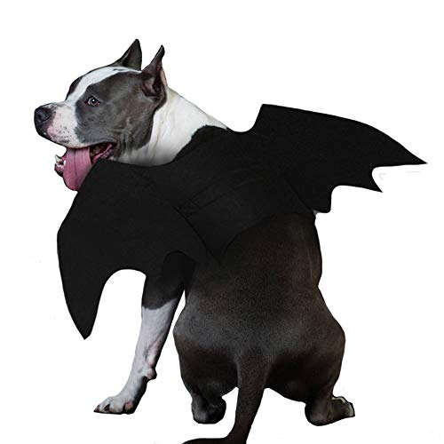 ZOOPOLR Bat-Dog Costume for Dogs, Bat Wing Party Pet Dress Up Halloween Costume Halloween Atmosphere for -