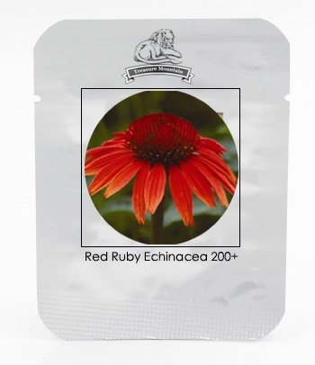 Heirloom Red Ruby Echinacea Perennial Coneflower Seeds, Professional Pack, 200 Seeds / Pack, Very Beautiful Long Lasting