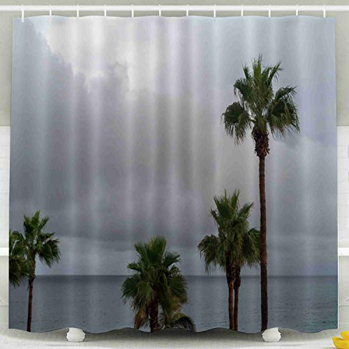 Shorping Kid Shower Curtain, Shower Curtain Set with Hooks,78x72inches Phoenix canariensis Canary Island Palm Tree Lanzarote Canary Islands Spain Waterproof Decor Bathroom
