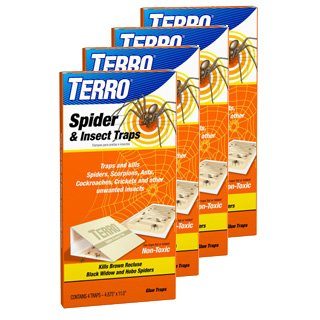 Terro 3200 Spider Traps 4 in a package, (Pack of 4, 16 Traps - Recluse Spider