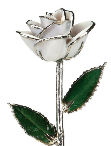 Allmygold Jewelers Snow White Laquered Platinum Dipped Long Stem Genuine Rose In Gift Box