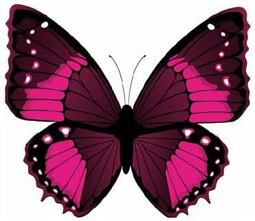 Fahnenmax Autoaufkleber Sticker Schmetterling Purpur Aufkleber Auto