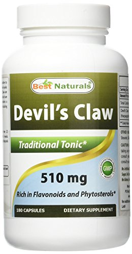 BEST NATURALS Devil's Claw 510 mg 180 Capsules, 0.02 Pound