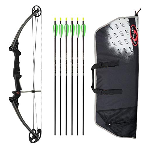 (Genesis Archery Original Compound Bow (Right Hand, Black) with Case and Six NASP Official Arrows Bundle )