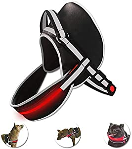 Win A Free Dog Harness No-Pull Harness Reflective Led Dog Harness with...