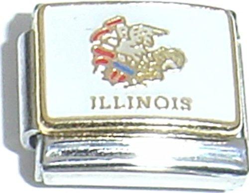 Illinois State Flag Italian Charm ()