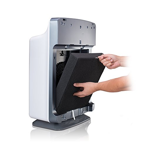 Alen BS-FRESHPLUS-STA BreatheSmart HEPA-FreshPlus Air Purifier Brushed Stainless