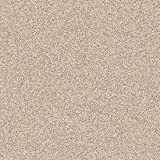 Wilsonart Sheet Laminate 5 x 12: Beige Nebula