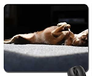 Dog Mouse Pad, Mousepad (Dogs Mouse Pad)