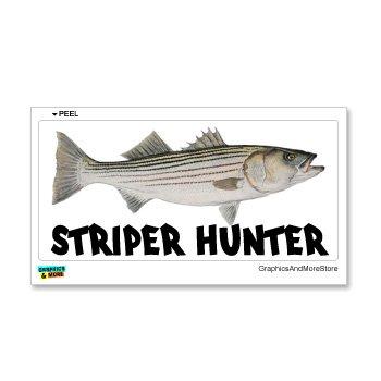 Graphics and More Striper Hunter - Striped Bass Fish Fishing Fisherman - Window Bumper Laptop Sticker