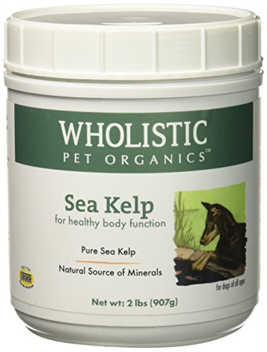 - Wholistic Pet Organics Sea Kelp Supplement, 2 lb