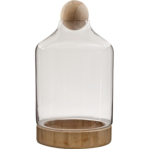 Pride Garden Products Vidro 10 in. W x 19 in. H Glass Terrarium with Wood Dish and Stopper by Pride Garden Products