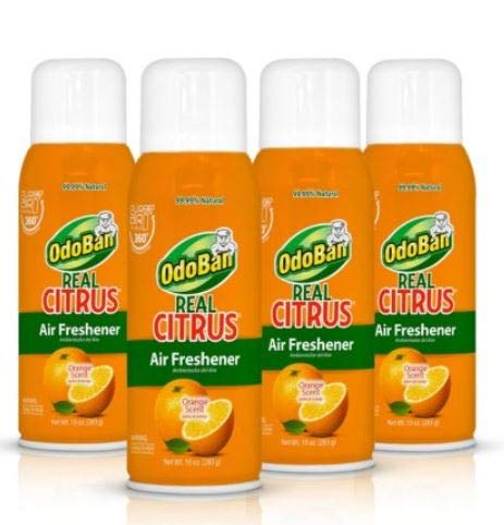 OdoBan Real Citrus Air Freshener, Orange (10oz., 4pk.) OdoBan Real Citrus Air Freshener, Orange (10oz, 4pk.)