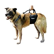 GingerLead Dog Support & Rehabilitation Harness, Tall Male by GingerLead (English manual)