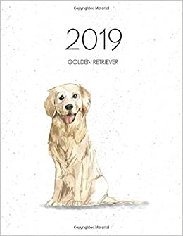 2019 Golden Retriever Dated Weekly Planner With To Do Notes Dog