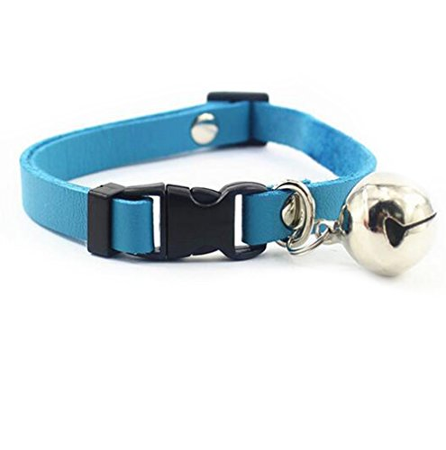 Suede Leather Pet Dog Collar, Medium Size 10