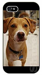 For Apple Iphone 5C Case Cover S Yellow puppy - black plastic case / dog, animals, dogs