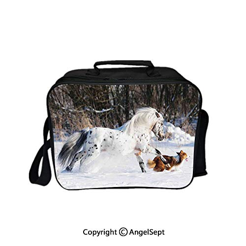 Travel Picnic Lunch Box Wide Open Lunch,Legendary Appaloosa Pony and Sable Border Collie Runs Gallop in Winter Photo Print Multicolor 8.3inch,Lunch Bags For Unisex Adults