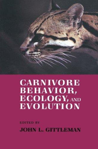 Carnivore Behavior, Ecology, and Evolution (Volume 1) by Springer