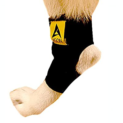 Agon Dog Canine Rear Leg Hock Joint Brace Paw Compression Wrap With Straps