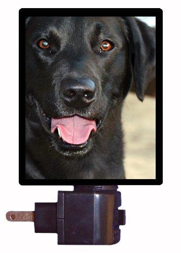 Dog Night Light - Black Lab - Labrador Retriever Labrador Retriever Light