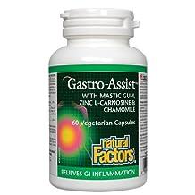 Natural Factors Gastro-Assist with Mastic Gum, Zinc L-Carnosine & Chamomile, 60 Caps
