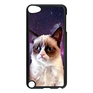 Durable Case for iPod touch5 w/ Grumpy Cat image at Hmh-xase (style 6)