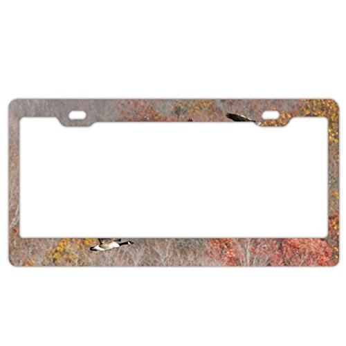 YEX Abstract Geese Pattern License Plate Frame Car Tag Frame Auto License Plate Holder 12