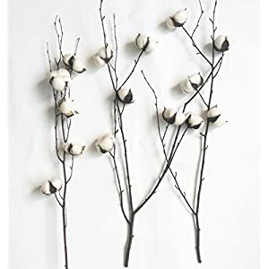 "Dongliflower Natural Cotton Ball Bolls with 25"" Birch Stem Twig Spray 2"