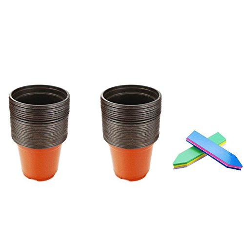 Oopsu 50PCS 4″ Plastic Flower Seedlings Nursery Supplies Planter Pot/pots Containers and 50 Plant Labels(5 colours) Review