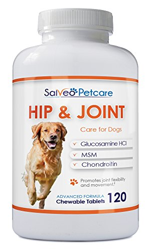 Salveo Petcare Glucosamine for Dogs 800mg Advanced - Hip and Joint Supplement with MSM Chondroitin and Vitamins C & E - 120 Beef Flavoured Chewable Tablets - Arthritis Pain Relief and Mobility (Tablets Dog 120)