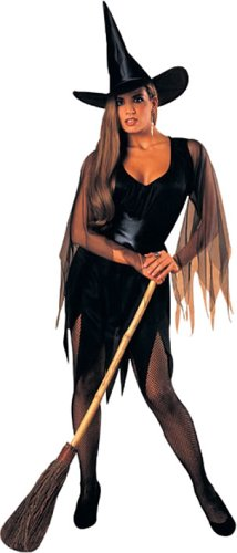 Rubie's Women's Sexy Witch Costume, As Shown, One Size ()