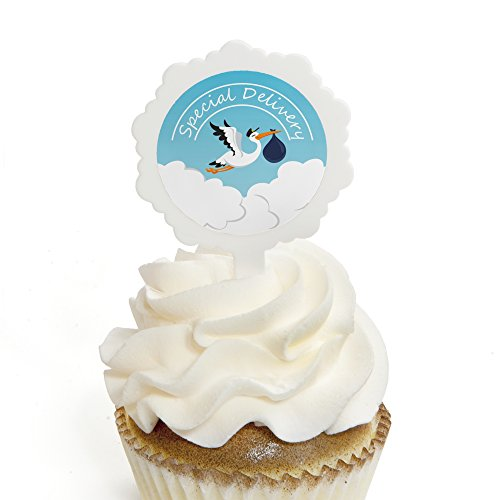 Boy Special Delivery - Cupcake Picks with Stickers - Blue Stork Baby Shower Cupcake Toppers - 12 Count (Stork Pick)