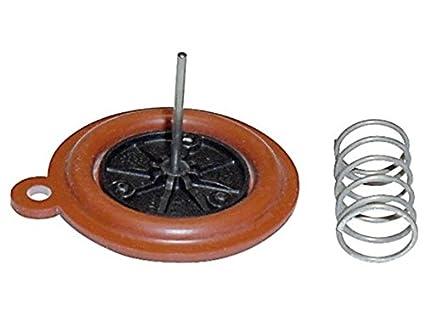 Membrana calentador Vaillant MAG mini 11-0/0 115300