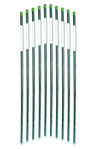 FiberMarker Driveway Markers 36-Inch Dark Green 50-Pack 5...