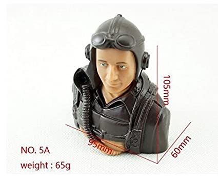 Dancing Wings Hobby 1/5 Scale Figure Pilots 5A Toy Model 1:5 Pilot With  Headset Glass for RC Airplane Model (LS-5A-2401A)