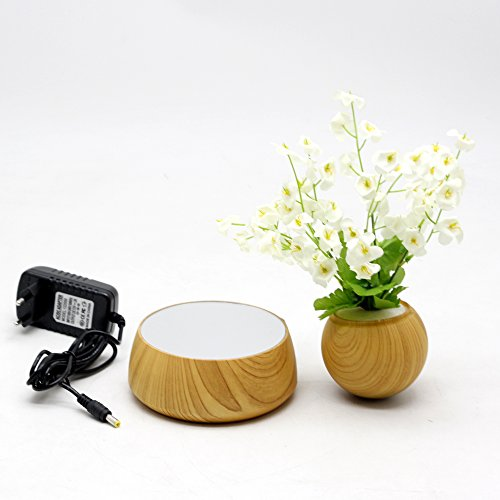 Levitation Wooden Bonsai Pot for Home and Office Decorations-Creative Prsent Floating air Bonsai by floatingglobes (Image #4)