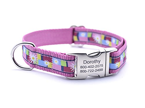 Daisy Blocks Pink Dog Collar with Laser Engraved Personalized Buckle (Daisy Block Collar)